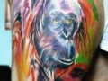 Best Tattoos   Color  7