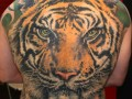 Best Tattoos   Color  170